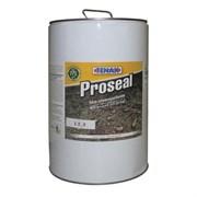 Покрытие Proseal водо/маслоотталкивающее (сильнодействующая защита) для полированных поверхностей 5л Tenax