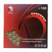 АГШК d. 100мм №Buff DIAM Premium dry (Черепашка)